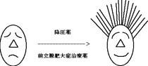 nakamura_01.jpg